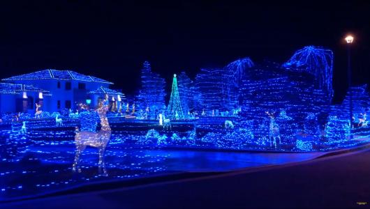 Thousands of blue Christmas lights.